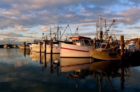 Amiante à bord des navires : la publication de la norme repoussée à 2019
